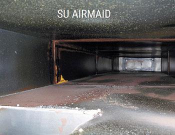 """Štai kaip atrodo ortakių vidus, kai naudojami """"Airmaid"""" ozonatoriai"""